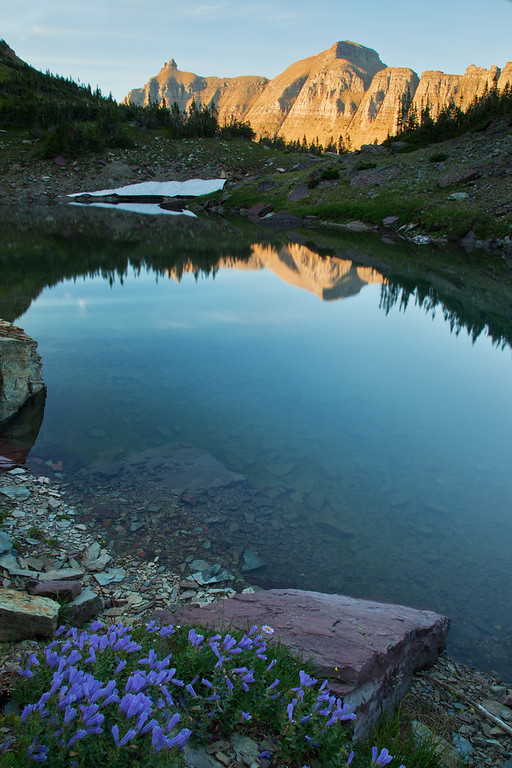 Sky Pilots, Pond, and the Garden Wall, Glacier National Park