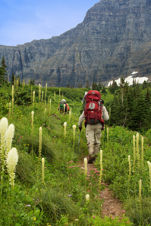 Beargrass on Loop Trail, heading up to Triple Divide Pass