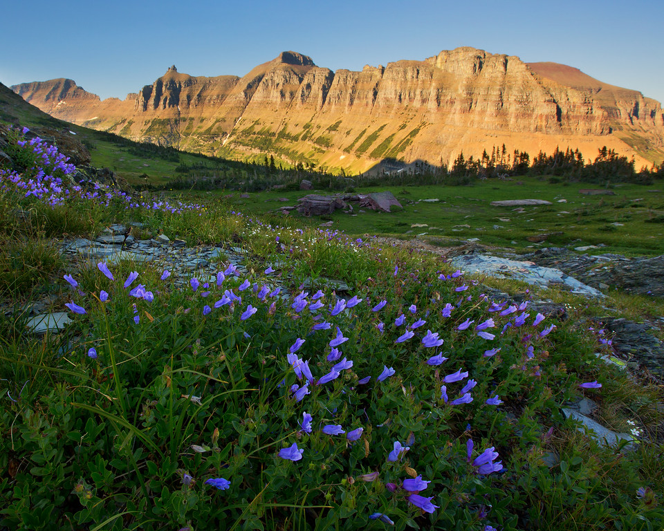 Sky Pilots and The Garden Wall, Glacier National Park