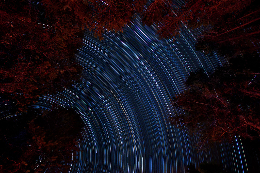 Camp Trails.  Star trails from our campsite at Fish Creek, Glacier National Park.  This is a nearly 3 hour exposure