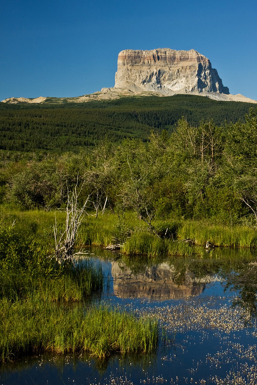 Chief Mountain with Reflection