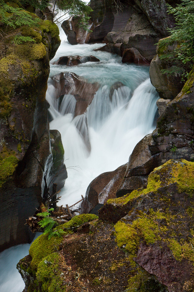 Falls on Avalanche Creek