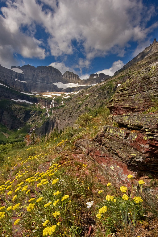 Rocks, Wildflowers, and Salamander Glacier
