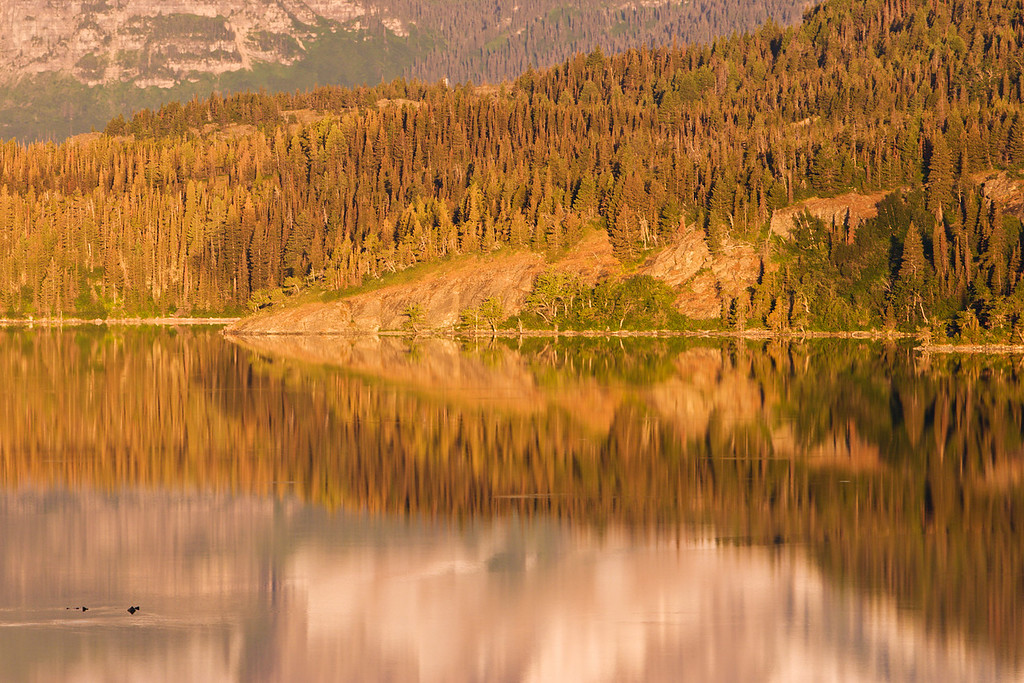 Morning Reflections on St Mary Lake 1