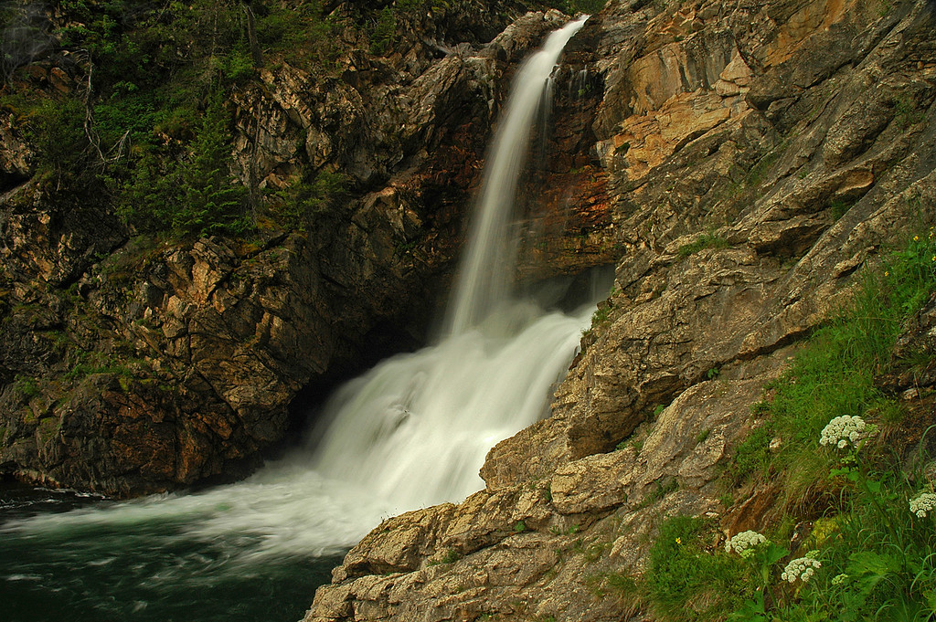 Running Eagle Falls near Two Medicine