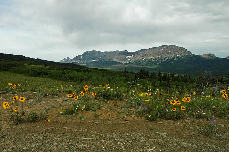 Glacier National Park from US 89 south of St Mary