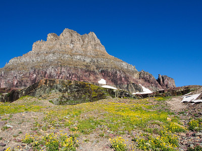 Clements Mountain at Logan Pass, Glacier NP