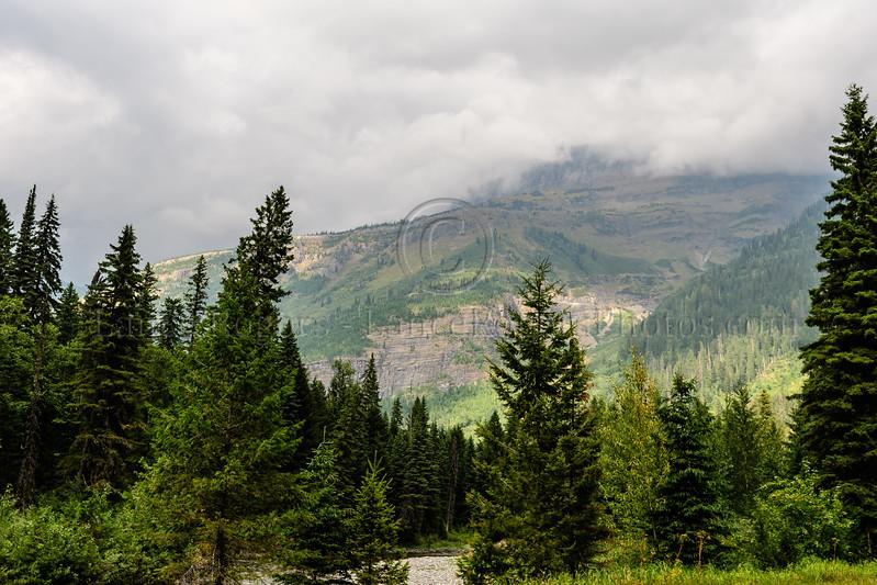 Montana_261