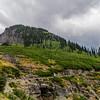 Montana_303