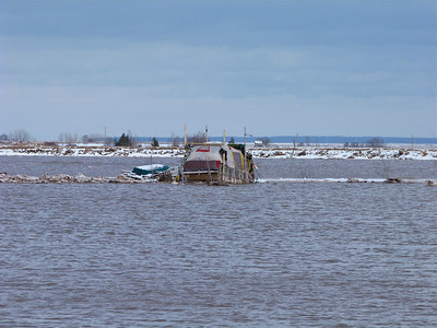 The art installation that has been in the harbour since late 2012, at Wolfville, Jan. 31, 2014, 16.2 m tide.