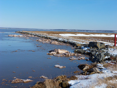Dyke just south of East Point, N. Grand Pre, Feb. 1, 2014, 16.5 m tide, no wave or wind action whatsoever.