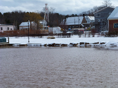 The lawn area immediately west of the wharf, at Wolfville, Jan. 31, 2014, 16.2 m tide.