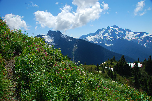 Mt. Sefrit and Mt. Shuksan from Goat Mtn.