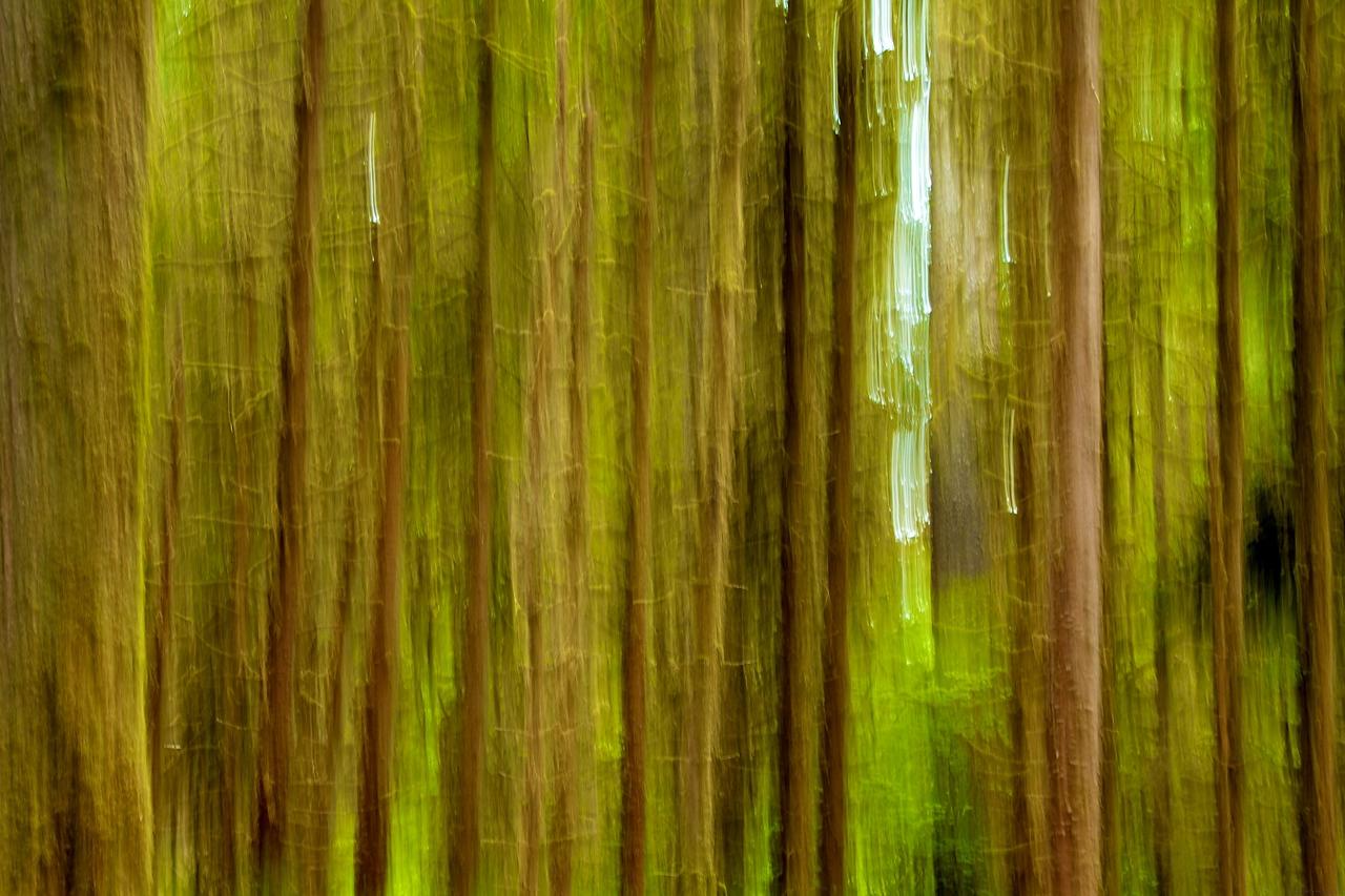 Tree Abstract.