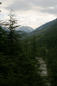 Gold River from West Canyon Trail
