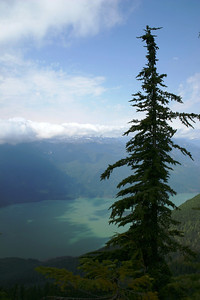 This is about 2/3 of the way up on Panorama Ridge. Pitt Lake is a such an incredible color!