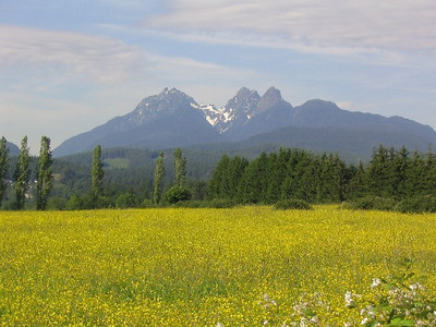 This is what Golden Ears looks like from afar. I climbed the left peak.