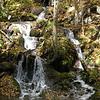 Ash Camp Branch Falls