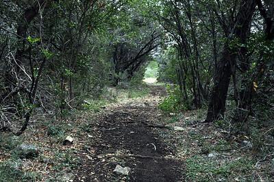 GCSNP_Interpretive_Trail_Run_20Nov11 (27)