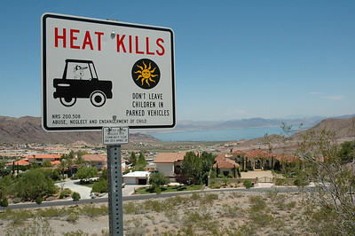 Heat kills (especially if it's 110 Fahrenheit)