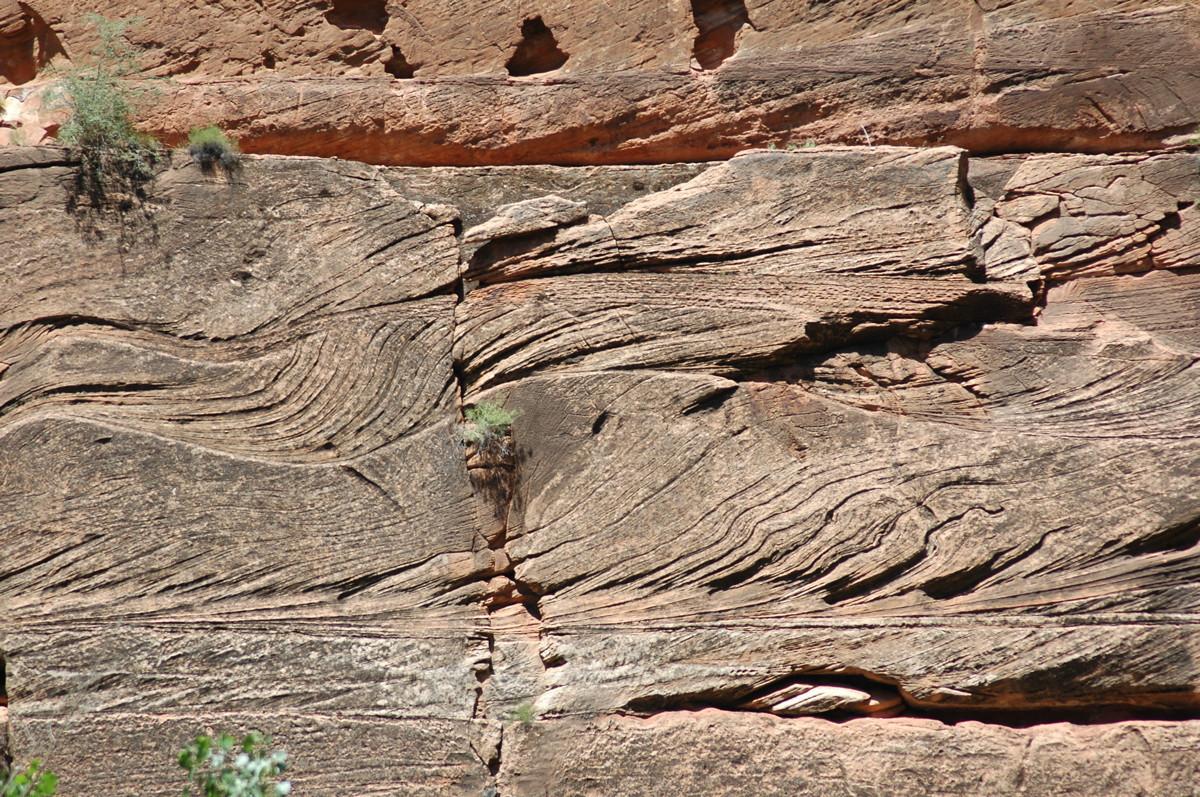 Zion National Park, deformed cross bedding