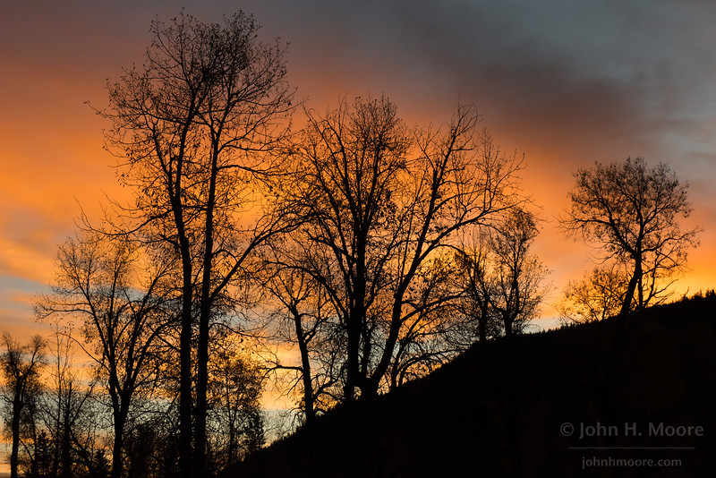 Sunrise color in Wyoming