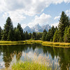 View of the Teton Mountains from the beaver ponds at Schwabacher's Landing in Grand Teton National Park, Wyoming.