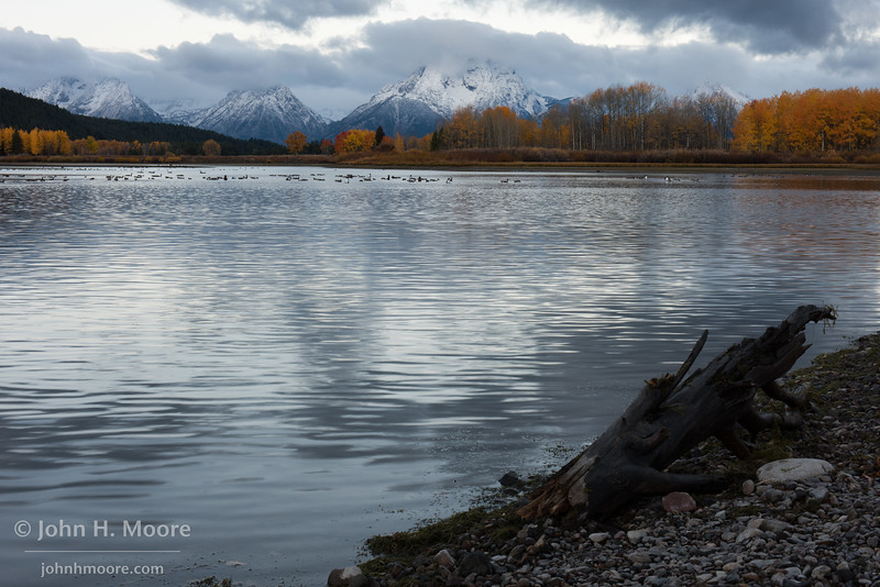 Early morning at Oxbow Bend in Grand Teton National Park, Wyoming, USA