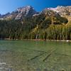 Sunken logs in the emerald String Lake in Grand Teton National Park, Wyoming, USA