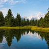 The Teton Mountains as seen from a beaver pond at Schwabacher's Landing in Grand Teton National Park, Wyoming.