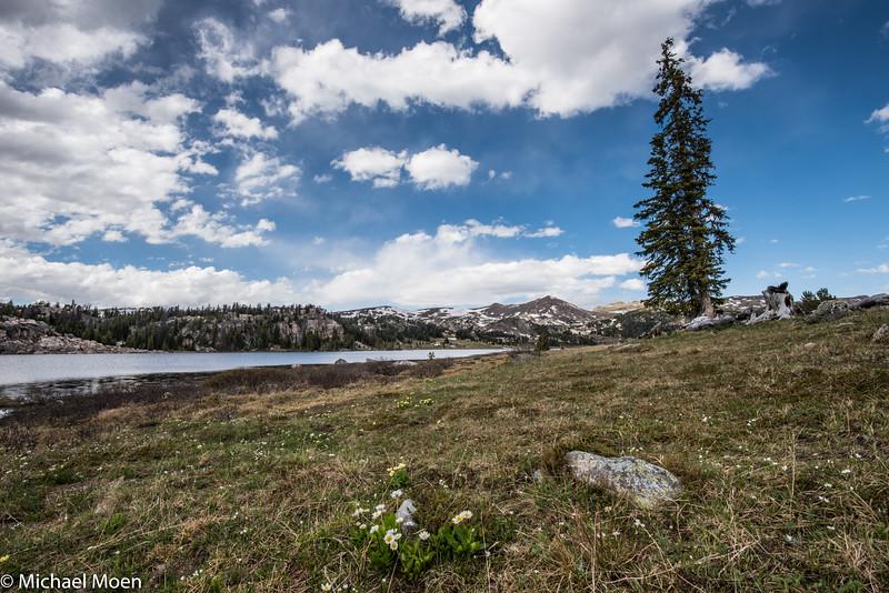 Beartooth Lake View 1