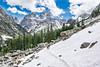 Snow Fields in Cascade Canyon