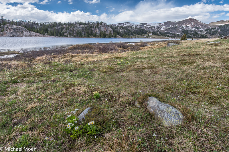 Beartooth Road Lake View 2