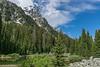 Cascade Canyon View