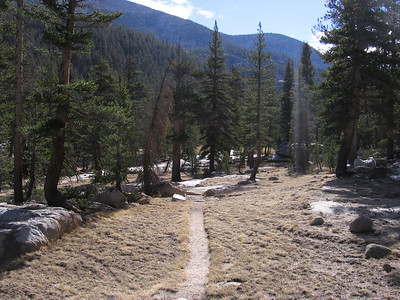 Pleasant trail in the region of Glacier Valley, looking southeast.