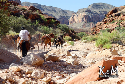 Trail to Havasupai (3x2)