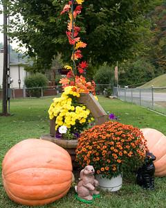 pumpkins-4926