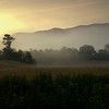 Rising Morning Mist Near John Oliver Cabin Cades Cove