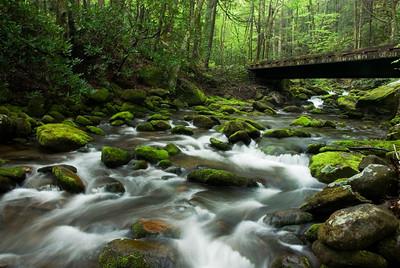 Bridge at Roaring Fork, Great Smoky Mountains