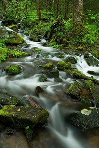 Cascade along Newfound Gap Road near Cherokee, Great Smoky Mountains.