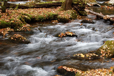 Great_Smoky_Mts_2006-10-26_36