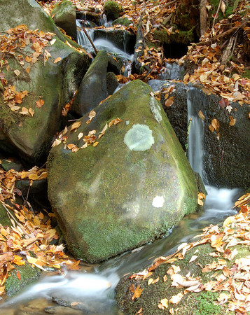 Great_Smoky_Mts_2006-10-26_34_1