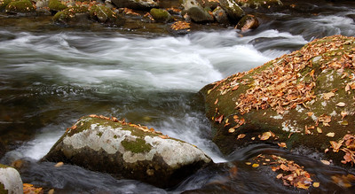 Great_Smoky_Mts_2006-10-26_48
