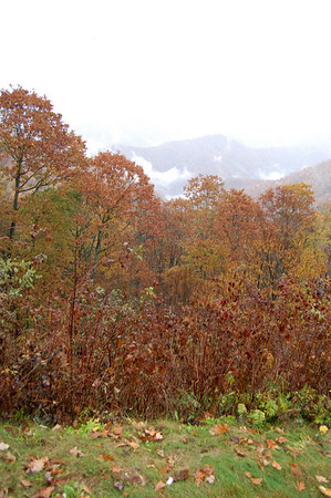 Great_Smoky_Mts_2006-10-27_3