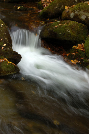 Great_Smoky_Mts_2006-10-26_68