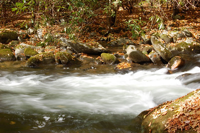 Great_Smoky_Mts_2006-10-26_42