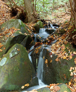 Great_Smoky_Mts_2006-10-26_31