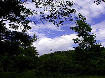 Looking up at Blue Skies over Russell Field while lying in a field of soft green grass view 1