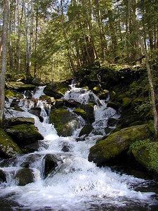 Noisy Falls, GSM, TN Roadside waterfall out near Pittman Center