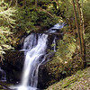 Honey Cove Falls. 30 ft high.<br /> Back in Honey Cove, GSM.